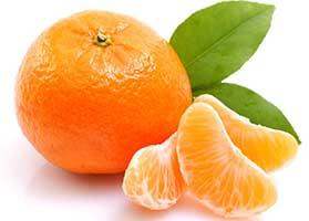 mandarina - www.chefcruceanu.ro