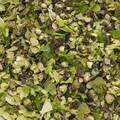 Fulgi de Sare de Mare cu Piper si Alge de mare, Peppery Umami (Cornwall, Anglia), 40g - Cornish Sea Salt