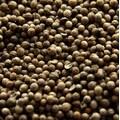 Seminte de Coriandru, 1Kg