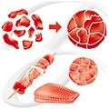 Transglutaminaza Activa® GS /Peste, 1kg - Ajinomoto lipire bucati de carne