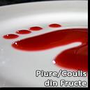 Piure/Coulis din Fructe