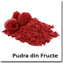 Pudra din Fructe