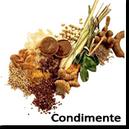 Arome de Condimente