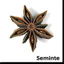 Arome de Seminte