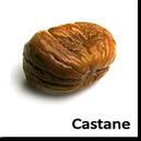 Castane