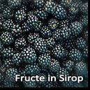 Fructe in Sirop