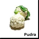 Extracte de Plante aromatice si legume - pudra