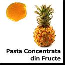 Pasta concentrata din Fructe