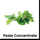 Paste concentrate din Plante aromatice si Legume