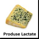 Produse Lactate moderne