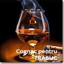Cognac pentru TRABUC