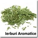 Ierburi aromatice