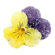 Mini-Petale de Violete Bicolore, Premium Crystal, 36buc. - SOSA