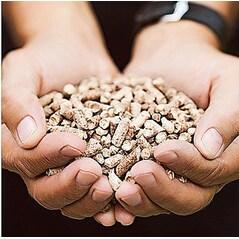 Peleti din Lemn Natural, Mesquite, pentru BBQ