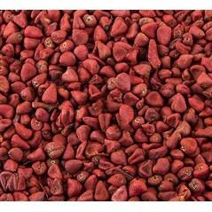 Seminte de Annatto, 1Kg - Bos Food