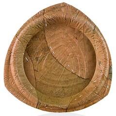 Farfurie din Frunze de Palmier, Unica Folosinta, ø 25cm, 75 buc.