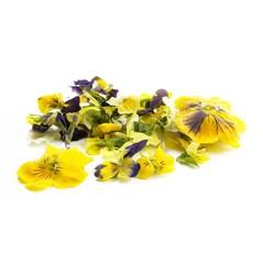 Flori de Panselute Tricolore, Liofilizate, 5g - SOSA