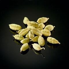 Cardamom Verde Jumbo de Guatemala, 50g - Le Comptoir des Poivres