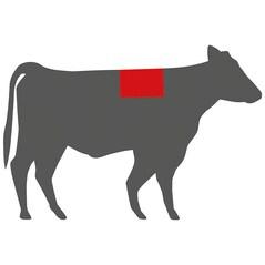 German Wagyu Ribeye Steak (Antricot), Congelat, cca. 300g - Germania