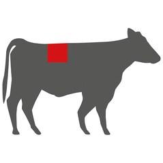 Hereford T-Bone Steak, Congelat, cca. 800g - Irlanda