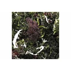 Kaiso Dried Seaweed Mix, Alge de Mare Uscate, 6 Soiuri de Alge pentru Salata Kaiso, 100 g
